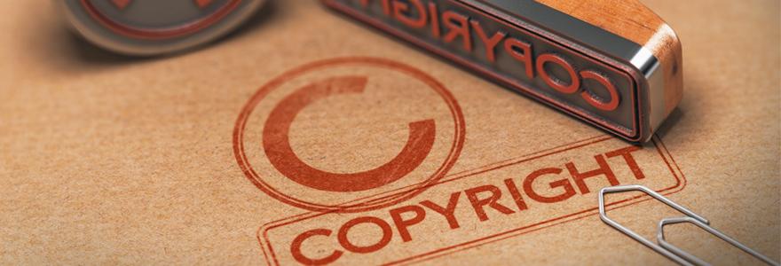 propriétés intellectuelles et ses droits d'auteur